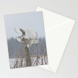 Perfect landing Stationery Cards