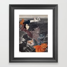 Ol' Cat Canyon Framed Art Print