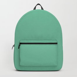 DPCSD neutral green color Backpack