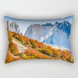 Patagonia Rectangular Pillow