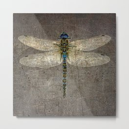 Dragonfly On Distressed Metallic Grey Background Metal Print
