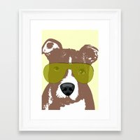 pit bull Framed Art Prints featuring American Pit Bull Terrier by ialbert