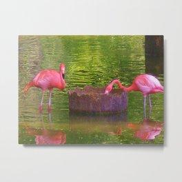 Pink times 2 Metal Print