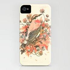 New Graves iPhone (4, 4s) Slim Case