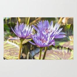 Lavender Lilies Rug