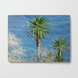 Palm Trees Meet Sea Metal Print
