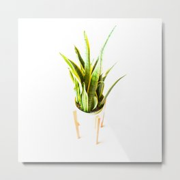 all day California Vegetation Plant Metal Print