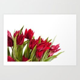 Red tulips bouquet sprinkled Art Print