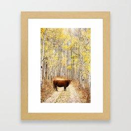 Cow in aspens Framed Art Print