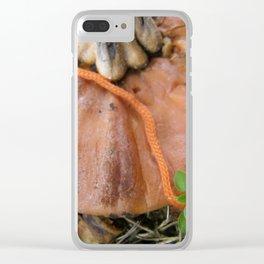 Pumpkin lid Clear iPhone Case
