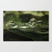 crocodile Canvas Prints featuring Crocodile by PrinzPhotographie