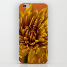 Orange Soda iPhone & iPod Skin