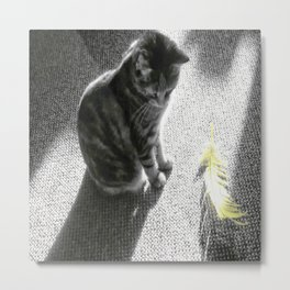 Little cat and Feather Metal Print