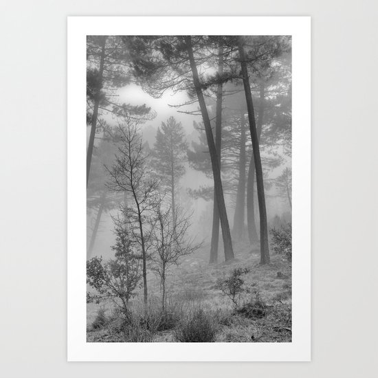 """""""Into The Woods"""" Dream Forest II Art Print"""