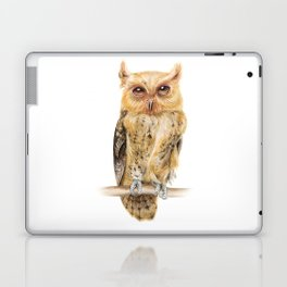 Animals | Owl Watercolour Print | Philippine Scops Owl | Painting Laptop & iPad Skin