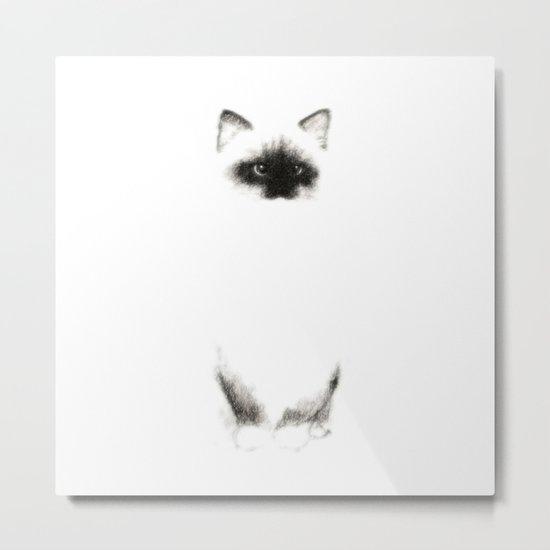 Angora Siamese Cat - Chat Siamois Angora Metal Print
