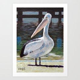My favourite bird Art Print