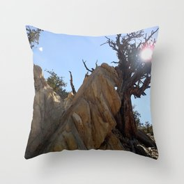 Tree leaning on rock Throw Pillow