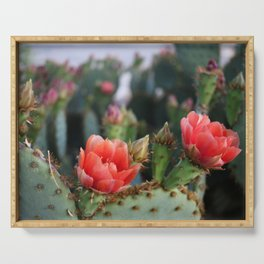 Cactus Flowers Series: Pink Blooms Serving Tray
