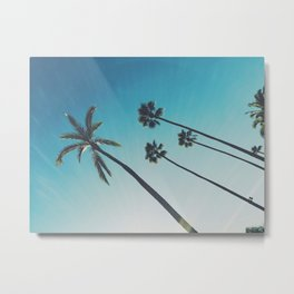 Palm Dreams Metal Print