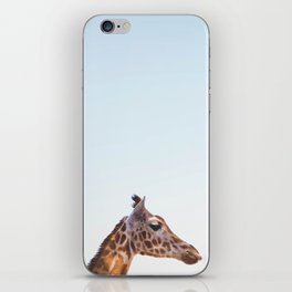 giraffe #society6 #decor #buyart iPhone Skin