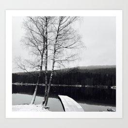 Norwegian Winter Art Print