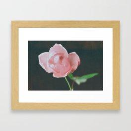 Adore Framed Art Print