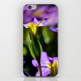 Light purple flowers iPhone Skin