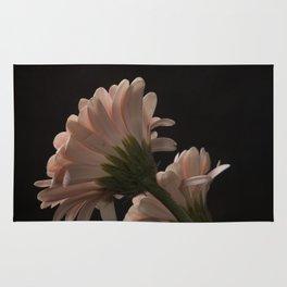 Exotic Pink on Black Gerbera Daisy Petals Rug