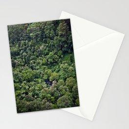 rainforest Stationery Cards