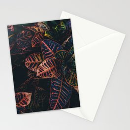 Dark Leaves - Nature Photography Stationery Cards