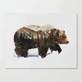 Arctic Grizzly Bear Canvas Print