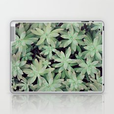 Succulent Abstract Laptop & iPad Skin