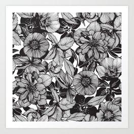 Hellebore lineart florals Art Print
