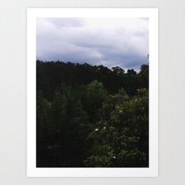Charlottesville / Storm Magnolia Art Print