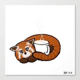 Coffee Red Panda Canvas Print