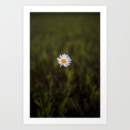 I've been longing for, daisies to push through the floor Art Print