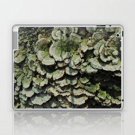 Forest Mushrooms Laptop & iPad Skin