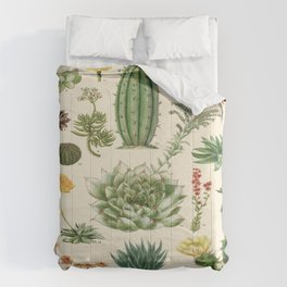 Cactus Vintage Scientific Illustration Encyclopedia Labeled Diagrams Comforters