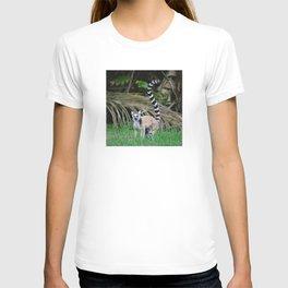 Madagascar's Exotic Ringtail Lemur T-shirt