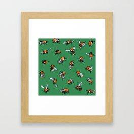 Bombus pascuorum Framed Art Print