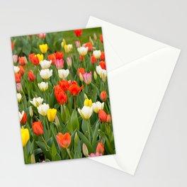 Plenty tulips mix grow in garden Stationery Cards