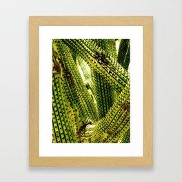 Monochrome Cactus Framed Art Print