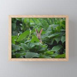 Garden Bunny Framed Mini Art Print