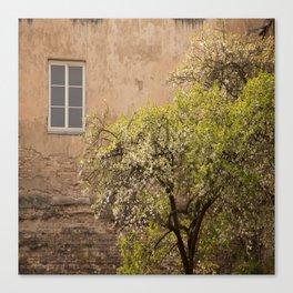 Scene in Old Town #decor #society6 #buyart Canvas Print