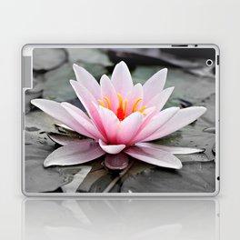 Pink Lotus Flower Waterlily Laptop & iPad Skin