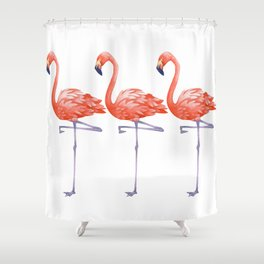 A Colorful Flamingo Triune Shower Curtain