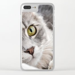 Cat lying with wide eyes open Clear iPhone Case