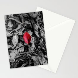 Red detail on black and white Stationery Cards