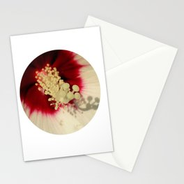 Hibiscus Flower Close Up Photography Floral Art Stationery Cards